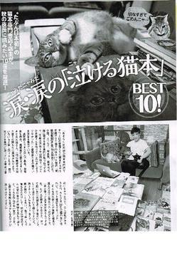 猫本専門のネット書店「書肆吾輩堂」が紹介されました!
